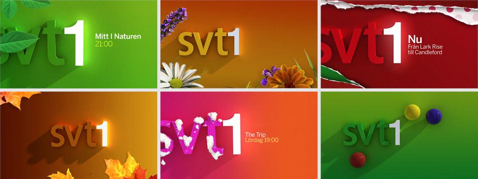 SVT1-01